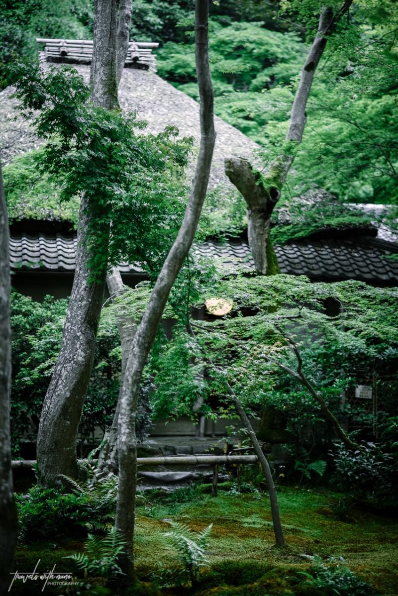 kyoto-secret-gardens-japan-8